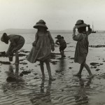 Photograph: Girls exploring rock pools - Cameron Bay by State Library of Victoria Collections, 1909
