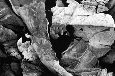Minor White, Moencopi Strata, Capitol Reef, Utah, 1962. Courtesy of The Minor White Archive, Princeton University.