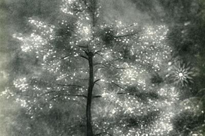 "Josef Breitenbach (German American, 1896-1984), ""Illuminated Tree"""
