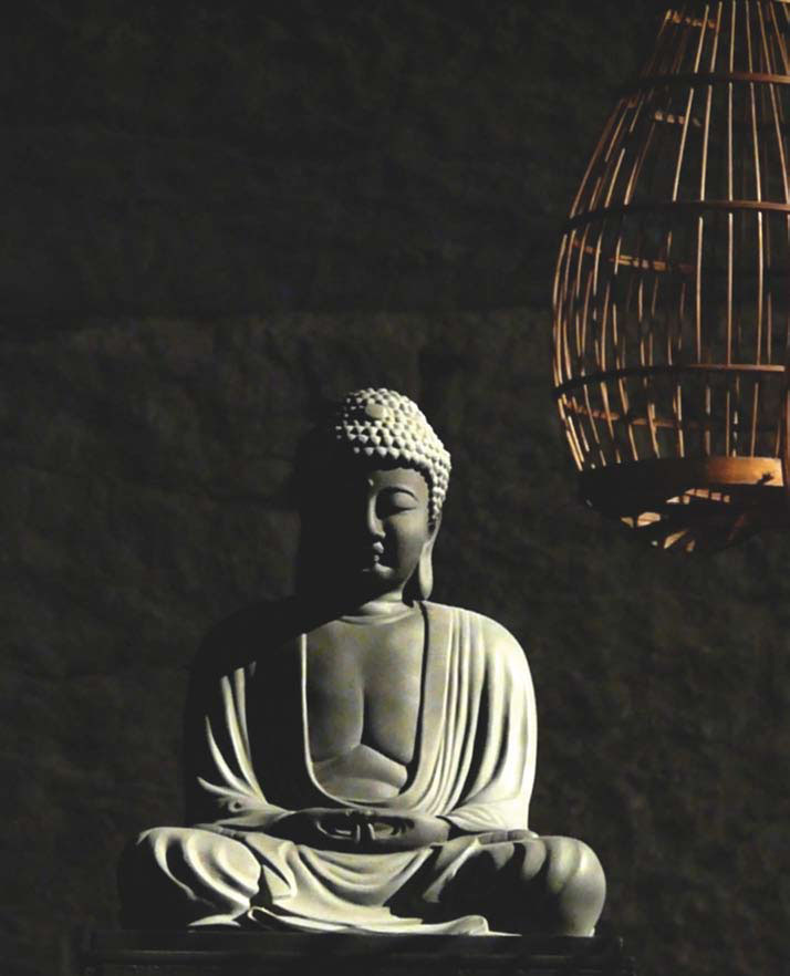 Robert Orgera, Photograph of a Statue of Buddha, in Provocative Proximity of a Cage (Wikimedia Commons)