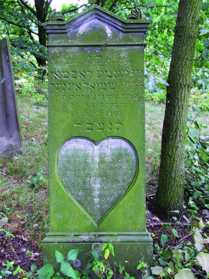 Gravestone, Jewish Cemetery, Olesno, Poland