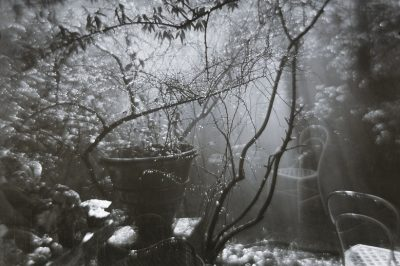 """Yu Xuanji, """"At Home in the Summer Mountains,"""" translated by Jane Hirschfield"""