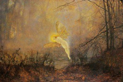 Wild Imagination, by Geneen Marie Haugen
